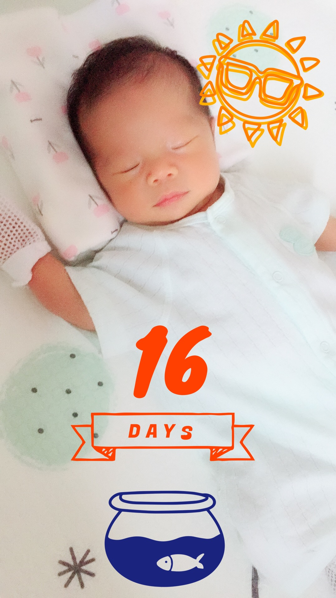 16 days old!