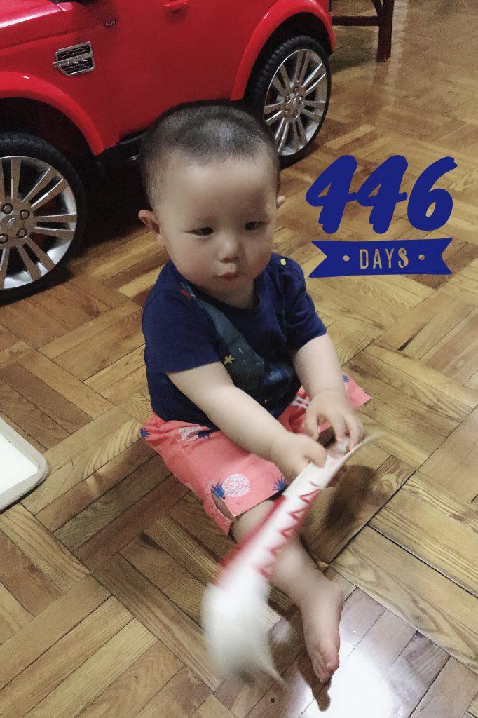 Lucas Day 446!!!