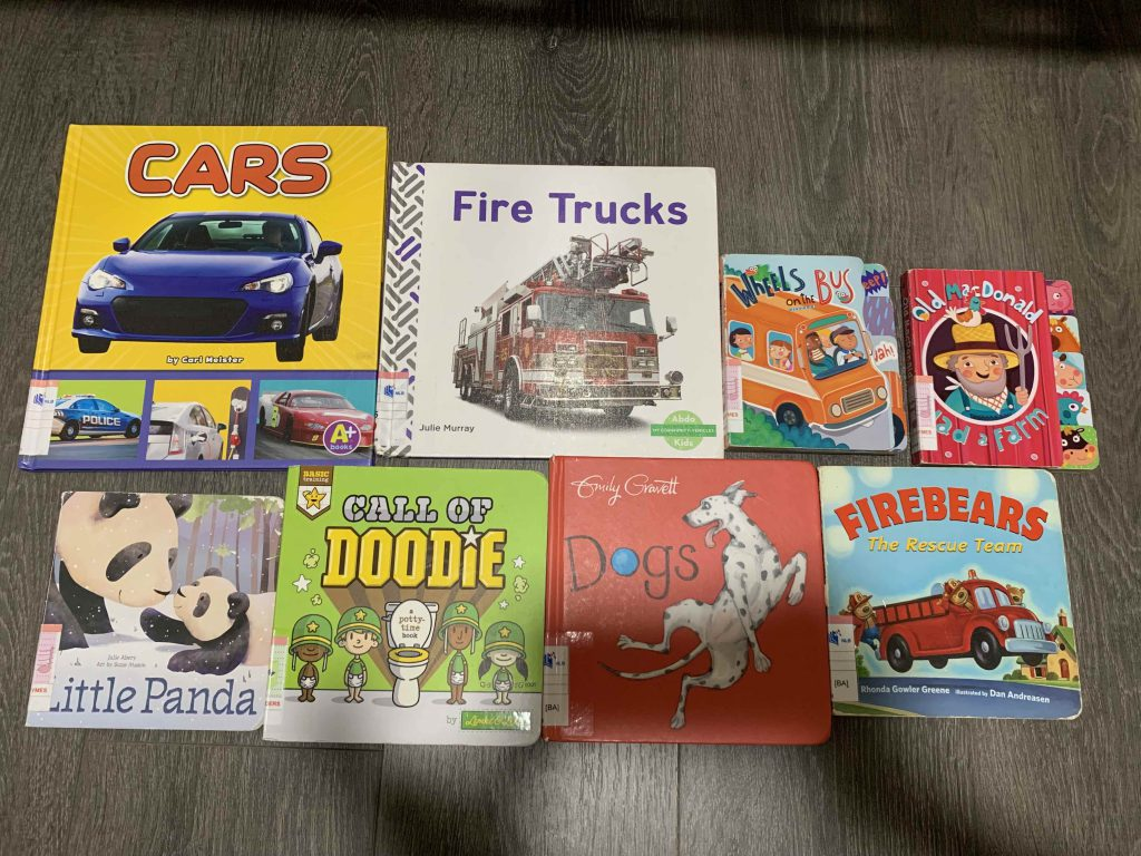 New supply of books for Lucas...