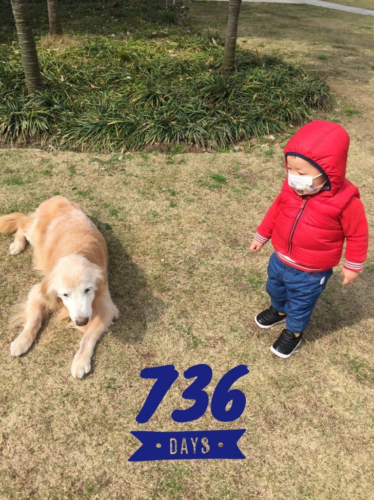 Lucas Day 736!